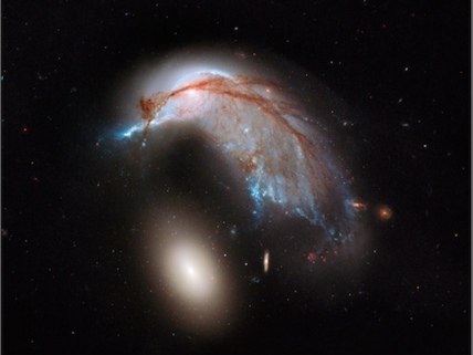 Penguin galaxy and 'egg'